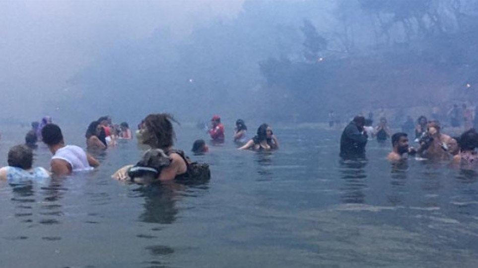 Τραγωδία στο Μάτι- Τους έκαψαν και το έθαψαν: Κακουργήματα για 20 μετά τις  αποκαλύψεις